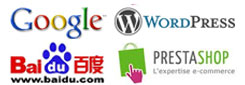prestashop baidu google wordpress